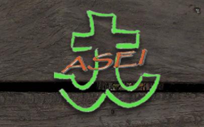 Scout ASEI-MI7 BUCCINASCO